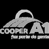 Cooper A1